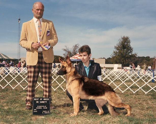 1985 German Shepherd Dog
